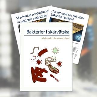 Ladda-ner-ebok-om-bakterier-SE.jpg